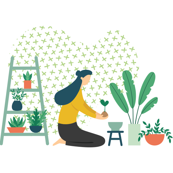 https://exteriorestropicales.com.co/wp-content/uploads/2019/11/illustration_delivery.png